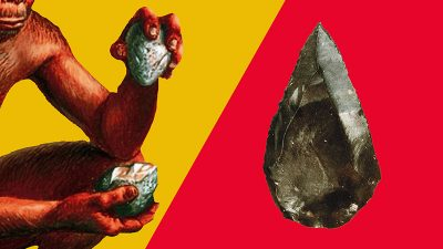 石器 ホモハビリス